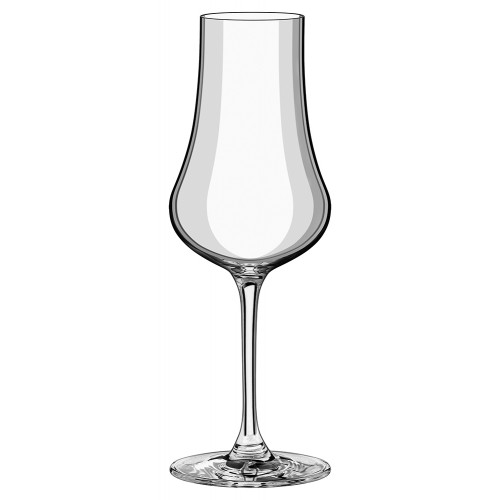 Rona Edge Fruit Cocktail Spirit Glass - 260ml